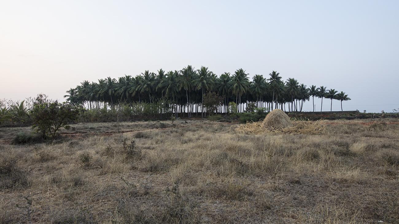Vistas of Tamil Land_Pulikkal_Unni_12